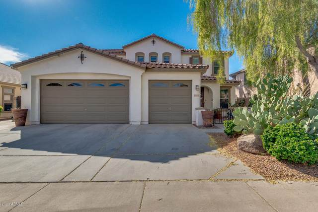 25830 N Sandstone Way, Surprise, AZ 85387 (MLS #6167327) :: Sheli Stoddart Team | M.A.Z. Realty Professionals