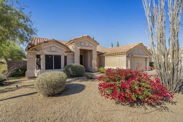 26266 N 47th Place, Phoenix, AZ 85050 (MLS #6167331) :: D & R Realty LLC