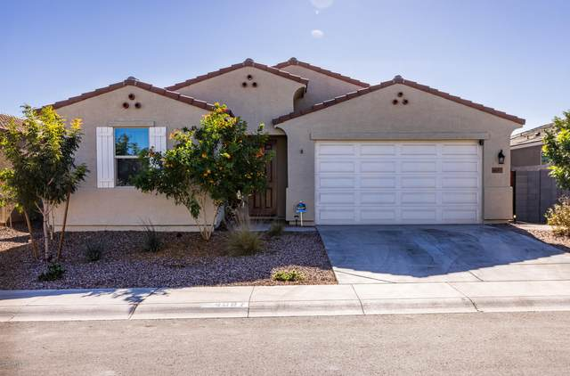 4097 W Dayflower Drive, Queen Creek, AZ 85142 (MLS #6167337) :: Yost Realty Group at RE/MAX Casa Grande
