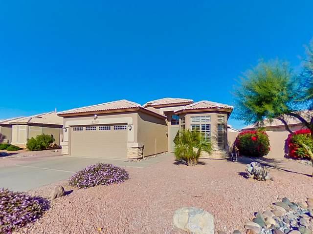 11050 W Tonto Lane, Sun City, AZ 85373 (MLS #6167345) :: The Daniel Montez Real Estate Group
