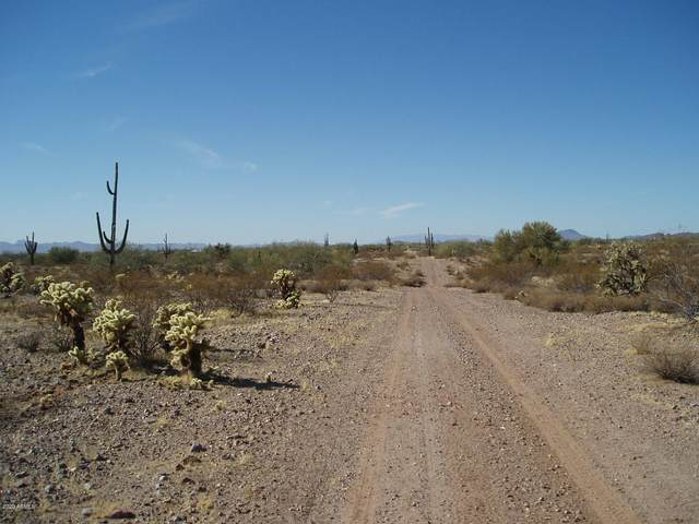 33601 W Villa Cassandra Way, Unincorporated County, AZ 85390 (MLS #6167373) :: The Newman Team