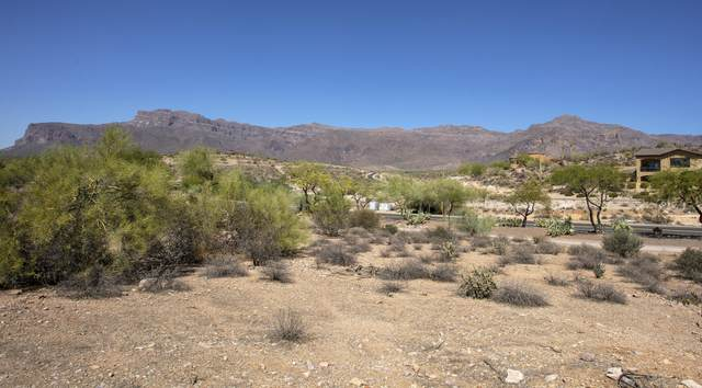 3703 S Avenida De Angeles, Gold Canyon, AZ 85118 (MLS #6167379) :: The Garcia Group