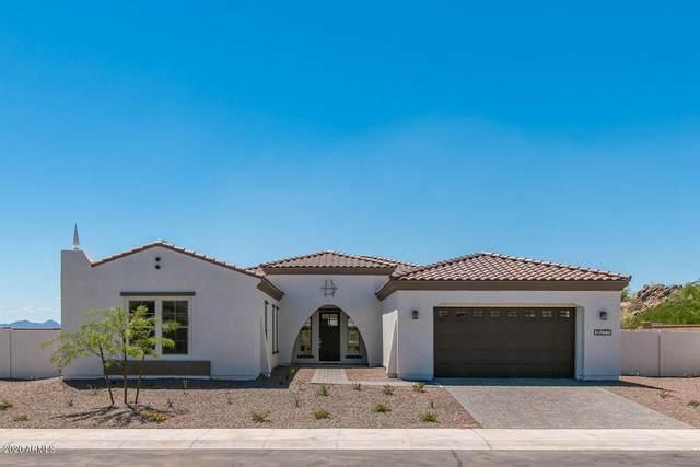 11039 S Santa Margarita Lane, Goodyear, AZ 85338 (MLS #6167380) :: Yost Realty Group at RE/MAX Casa Grande