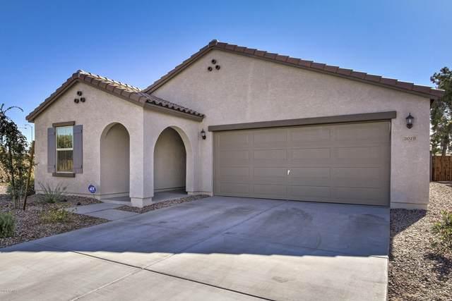 3019 E Flossmore Avenue, Mesa, AZ 85204 (MLS #6167404) :: BVO Luxury Group