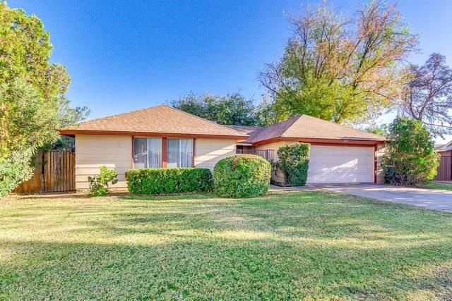 4815 N 63RD Lane, Phoenix, AZ 85033 (MLS #6167469) :: Homehelper Consultants
