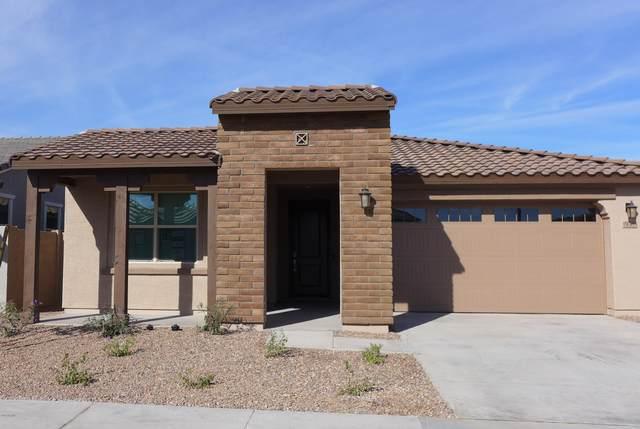 19584 W Valle Vista Way, Litchfield Park, AZ 85340 (MLS #6167476) :: BVO Luxury Group