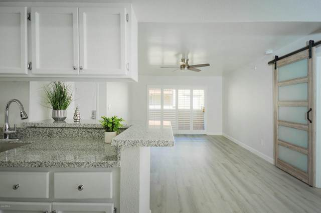 4554 E Paradise Village Parkway N #248, Phoenix, AZ 85032 (MLS #6167482) :: Homehelper Consultants