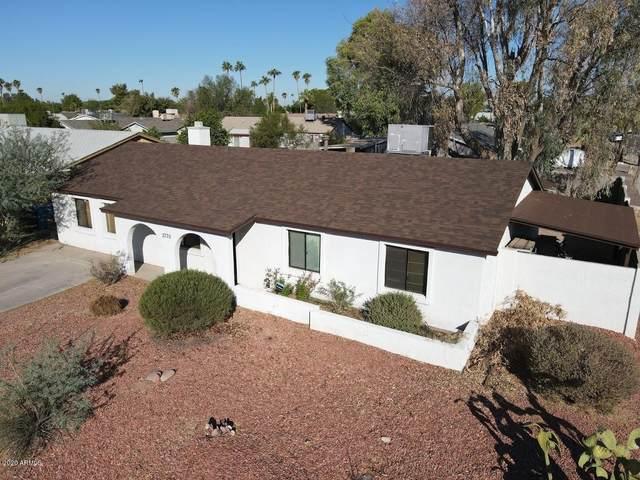 3770 E Pershing Avenue, Phoenix, AZ 85032 (MLS #6167490) :: Homehelper Consultants
