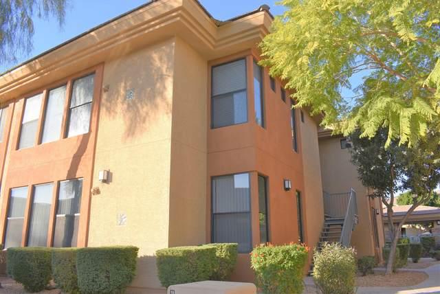 6900 E Princess Drive #1216, Phoenix, AZ 85054 (MLS #6167505) :: Maison DeBlanc Real Estate