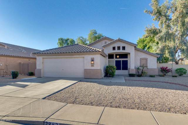 2283 E Torrey Pines Place, Chandler, AZ 85249 (MLS #6167539) :: Long Realty West Valley
