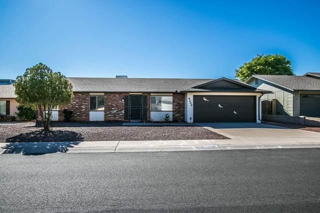 4209 E Mandan Street, Phoenix, AZ 85044 (MLS #6167592) :: My Home Group