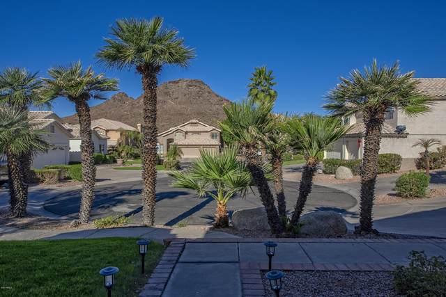 14229 N 16th Place, Phoenix, AZ 85022 (MLS #6167649) :: Service First Realty