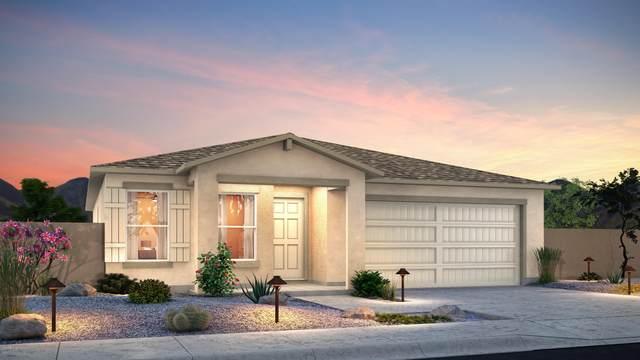 195 E Bobcat Place, Casa Grande, AZ 85122 (MLS #6167686) :: Yost Realty Group at RE/MAX Casa Grande