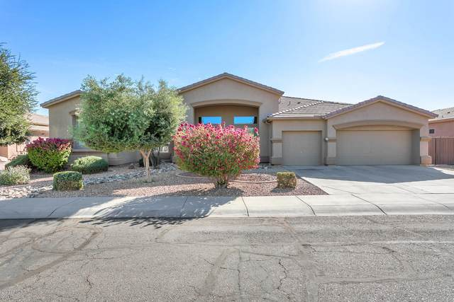 13117 W Berridge Court, Litchfield Park, AZ 85340 (MLS #6167720) :: BVO Luxury Group
