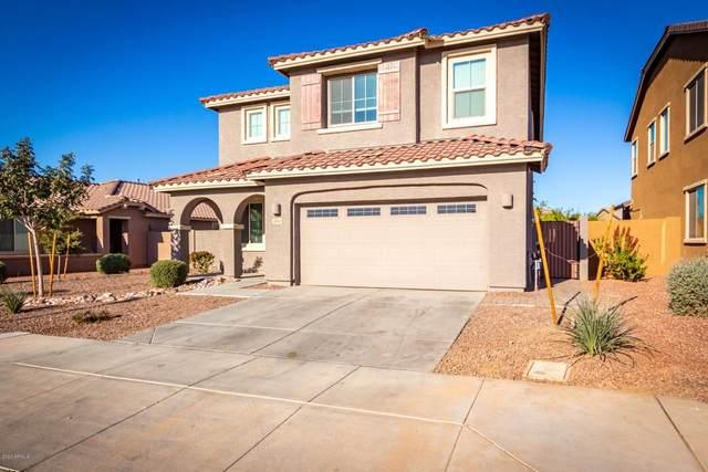 3842 E Desert Broom Drive, Chandler, AZ 85286 (MLS #6167785) :: CANAM Realty Group