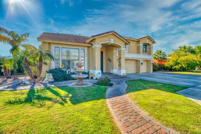 13621 W Vermont Avenue, Litchfield Park, AZ 85340 (MLS #6167835) :: BVO Luxury Group