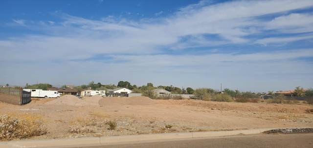 1802 W Mcneil Street, Phoenix, AZ 85041 (MLS #6167927) :: Yost Realty Group at RE/MAX Casa Grande
