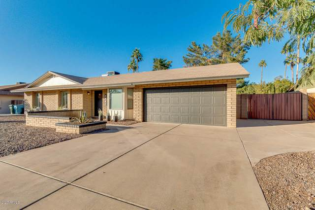 4442 E Aire Libre Avenue, Phoenix, AZ 85032 (MLS #6167928) :: CANAM Realty Group