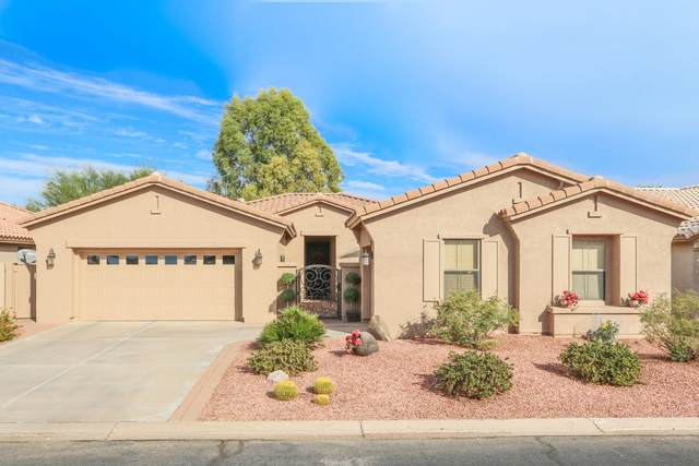 8904 E Copper Drive, Sun Lakes, AZ 85248 (MLS #6167933) :: BVO Luxury Group