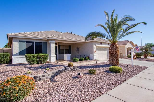 17241 N Javelina Drive, Surprise, AZ 85374 (MLS #6167949) :: My Home Group