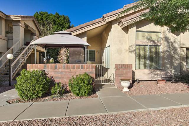 2201 N Comanche Drive #1028, Chandler, AZ 85224 (MLS #6168084) :: BVO Luxury Group