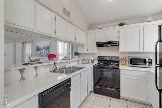 3885 W Cindy Street, Chandler, AZ 85226 (MLS #6168189) :: Keller Williams Realty Phoenix