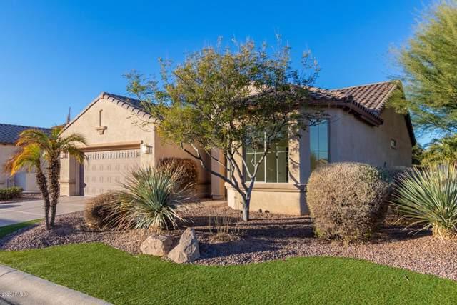16050 W Vale Drive, Goodyear, AZ 85395 (MLS #6168235) :: Keller Williams Realty Phoenix