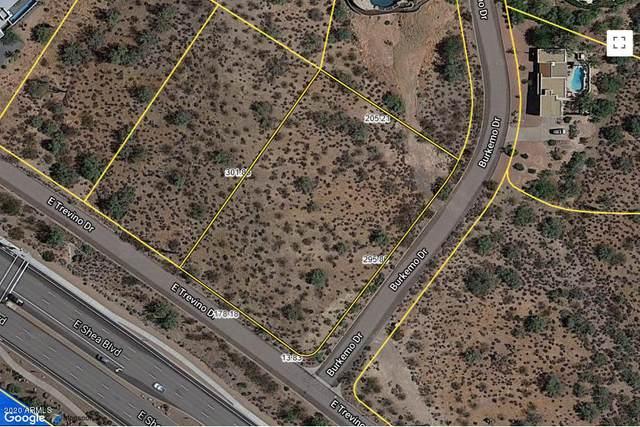 16856 E Trevino Drive, Fountain Hills, AZ 85268 (MLS #6168658) :: The Luna Team