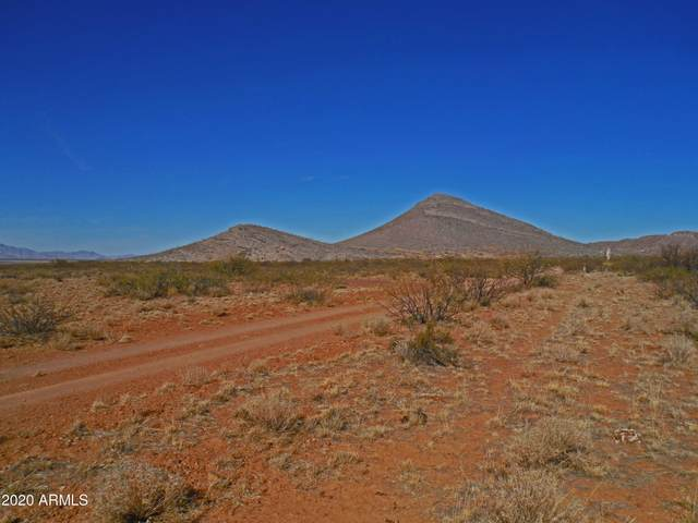 TBD Near Rucker Canyon Road, Elfrida, AZ 85610 (MLS #6168735) :: The Laughton Team