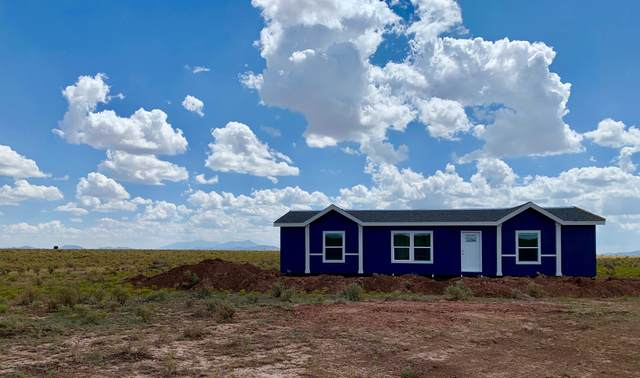 2951 S Grand Canyon Boulevard, Williams, AZ 86046 (MLS #6169033) :: The Ellens Team