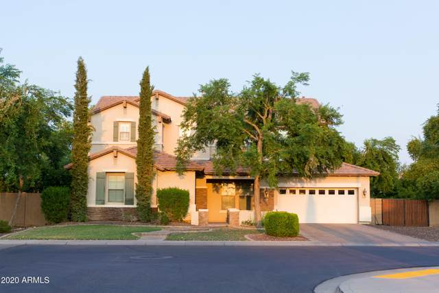 2649 S Roanoke Street, Gilbert, AZ 85295 (MLS #6169585) :: Lucido Agency