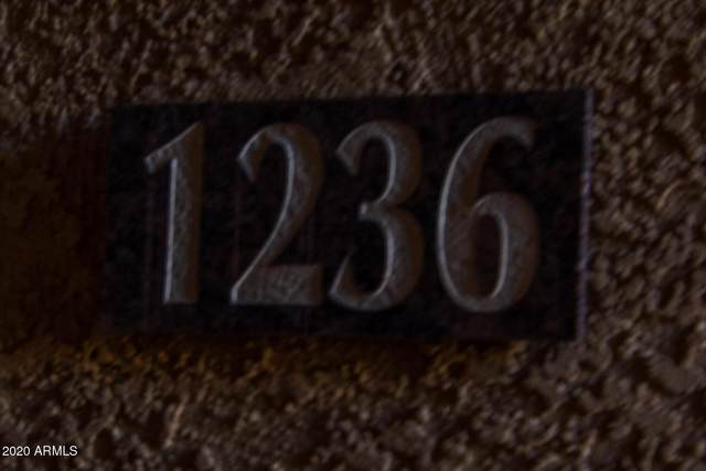 6900 E Princess Drive #1236, Phoenix, AZ 85054 (MLS #6169966) :: Maison DeBlanc Real Estate