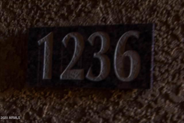 6900 E Princess Drive #1236, Phoenix, AZ 85054 (MLS #6169966) :: Long Realty West Valley