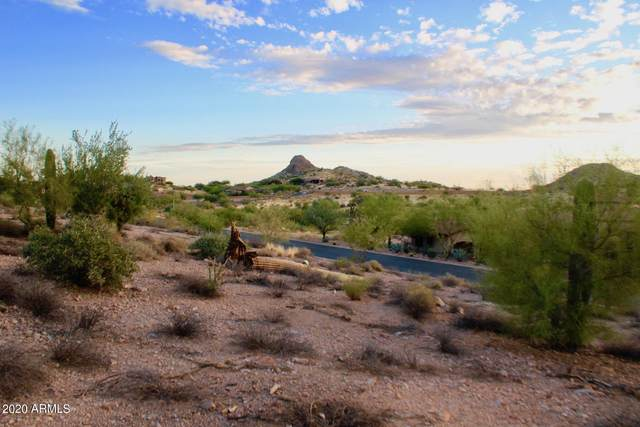9160 E Superstition Mountain Drive, Gold Canyon, AZ 85118 (MLS #6170201) :: Nate Martinez Team