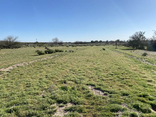 xxxx S 335th Avenue, Arlington, AZ 85322 (MLS #6170427) :: Long Realty West Valley