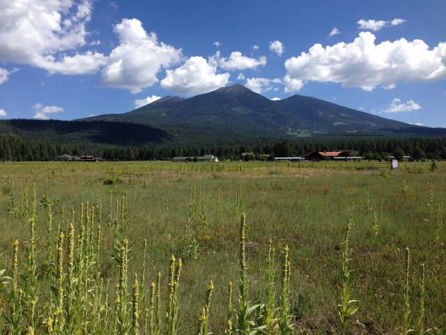 8800 Ranch At The Peaks Way, Flagstaff, AZ 86001 (MLS #6171610) :: neXGen Real Estate