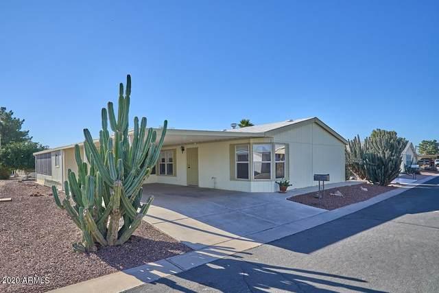 847 E Tee Street, San Tan Valley, AZ 85140 (#6171875) :: The Josh Berkley Team