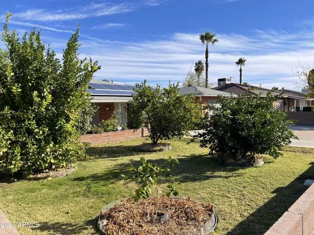 6119 N 19TH Avenue, Phoenix, AZ 85015 (MLS #6172141) :: Yost Realty Group at RE/MAX Casa Grande