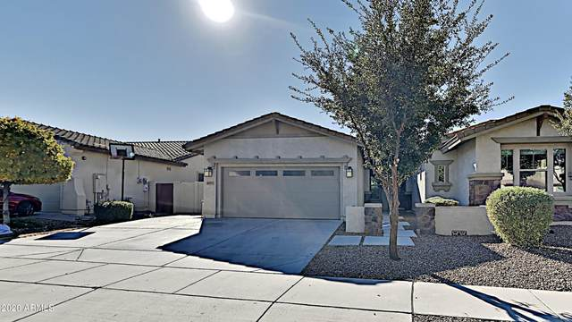 4575 E Waterman Street, Gilbert, AZ 85297 (MLS #6172448) :: Klaus Team Real Estate Solutions