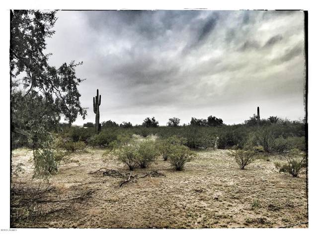161xx W Dale Lane, Surprise, AZ 85387 (MLS #6172624) :: RE/MAX Desert Showcase