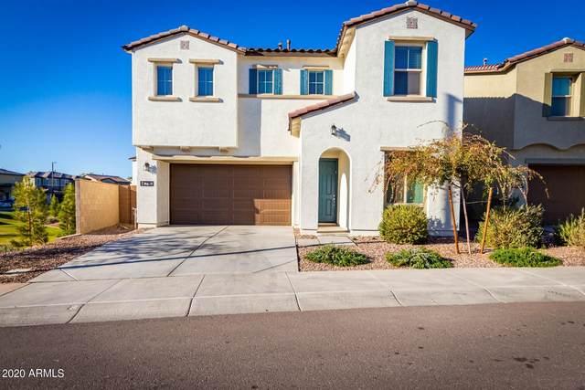 4716 E Tremaine Avenue, Gilbert, AZ 85234 (MLS #6172696) :: John Hogen | Realty ONE Group