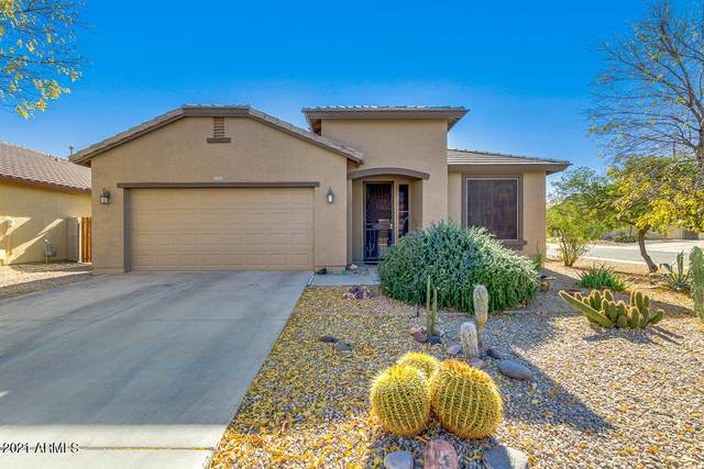 1273 W Desert Hollow Drive, San Tan Valley, AZ 85143 (MLS #6172817) :: Balboa Realty