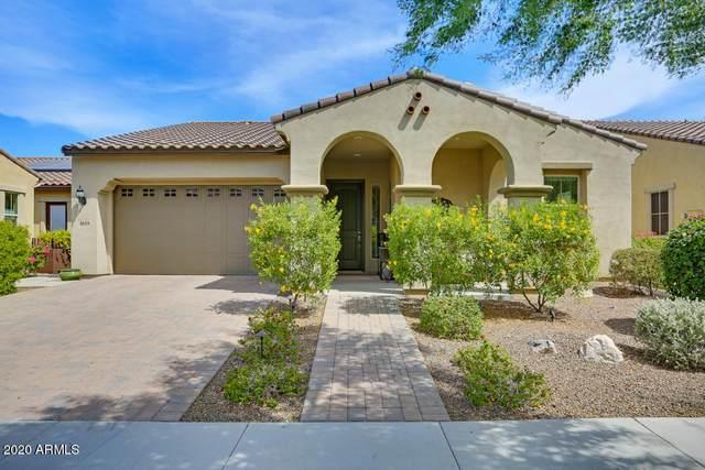 4659 N 206TH Avenue, Buckeye, AZ 85396 (MLS #6173502) :: Yost Realty Group at RE/MAX Casa Grande
