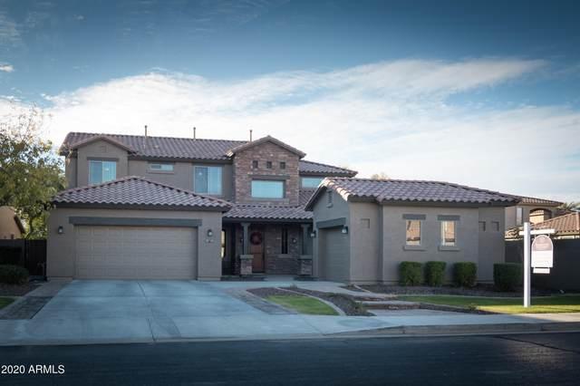 442 S Pleasant Drive, Chandler, AZ 85225 (MLS #6173572) :: Arizona Home Group