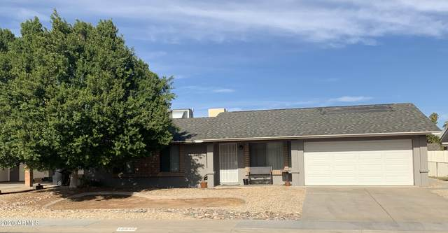 10616 W Orchid Lane, Peoria, AZ 85345 (MLS #6173832) :: Homehelper Consultants