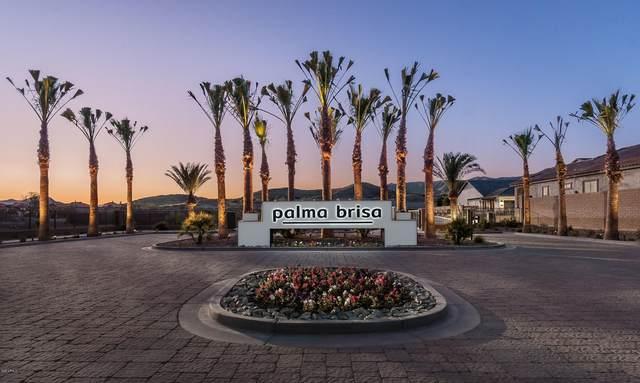 710 E Ashurst Drive, Phoenix, AZ 85048 (MLS #6174244) :: Klaus Team Real Estate Solutions