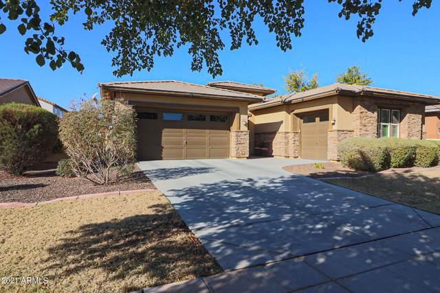 13508 N 147TH Drive, Surprise, AZ 85379 (MLS #6174508) :: Sheli Stoddart Team | M.A.Z. Realty Professionals