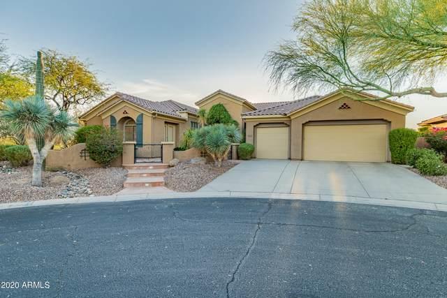 41606 N Signal Hill Court, Phoenix, AZ 85086 (MLS #6174545) :: John Hogen | Realty ONE Group