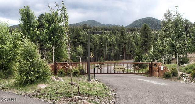 1112 Timbernook Xing Crossing, Williams, AZ 86046 (MLS #6175019) :: The W Group