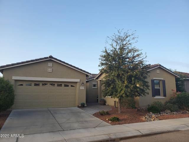 41691 W Harvest Moon Drive, Maricopa, AZ 85138 (MLS #6175056) :: TIBBS Realty